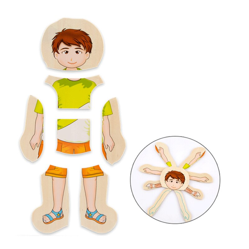 Wooden Human Body Puzzle | Online shopping for Toys ...